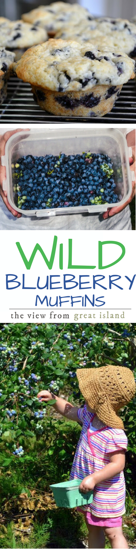 Wild Blueberry Muffins with Key Lime Butter pin