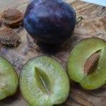 Italian plum crumble and a 12 step program
