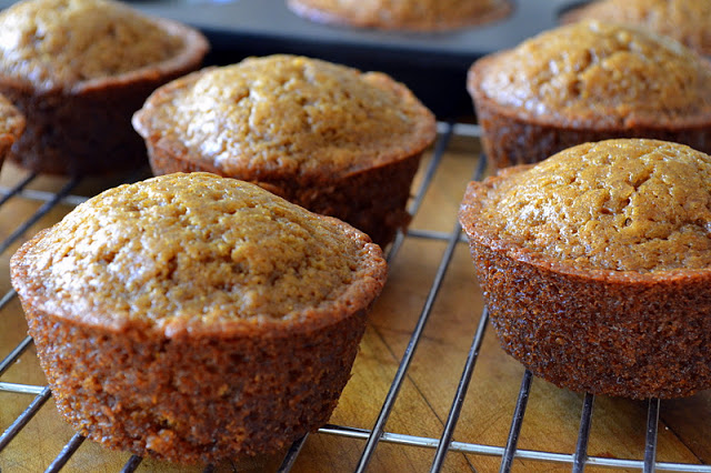 Gingerbread muffins cooling on a rack