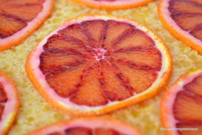 blood orange tart close up