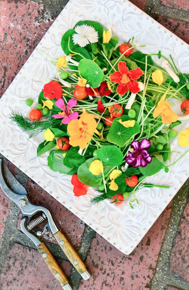 Springtime salad made with edible blossoms