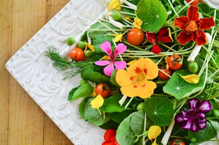 Overhead photo of edible flower salad on a white plate on a wood surface.