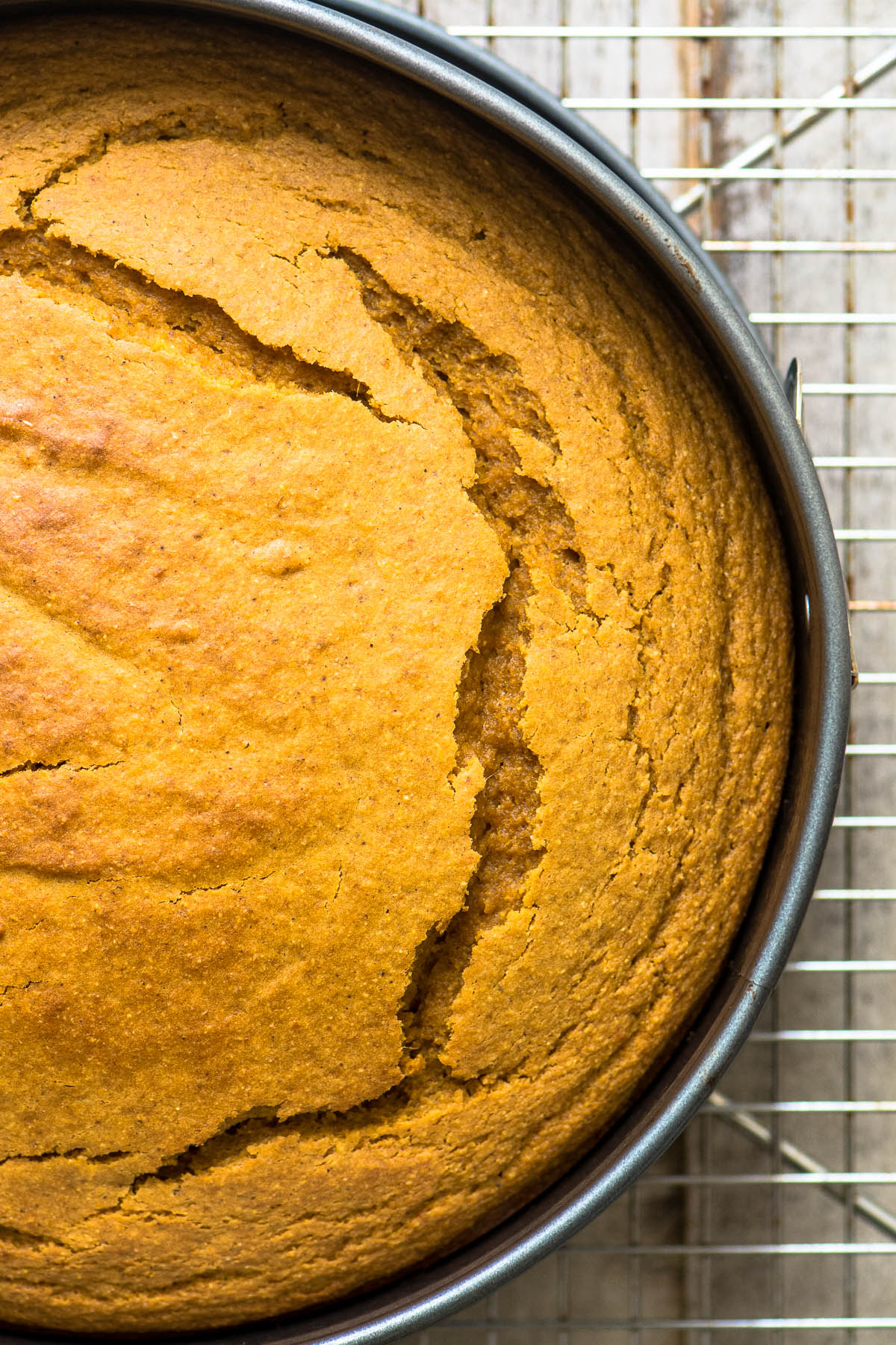 Pumpkin Cornbread just out of the oven, on a cooling rack