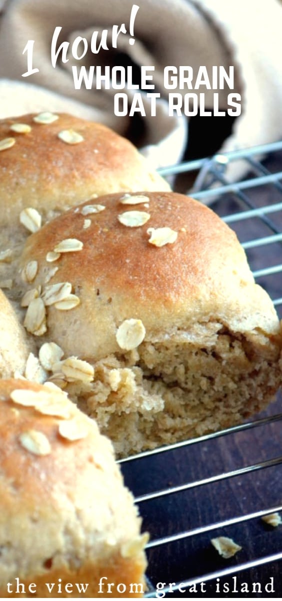 Quick Whole Grain Oat Rolls ~ these delicious yeasted dinner rolls can be made, from start to finish, in about an hour ~ pinky swear! #bread #rolls #bestrolls #dinnerrolls #quickrolls #wholegrainrolls #healthyrolls #oatflour #wholewheatflour #sidedish #yeastbread