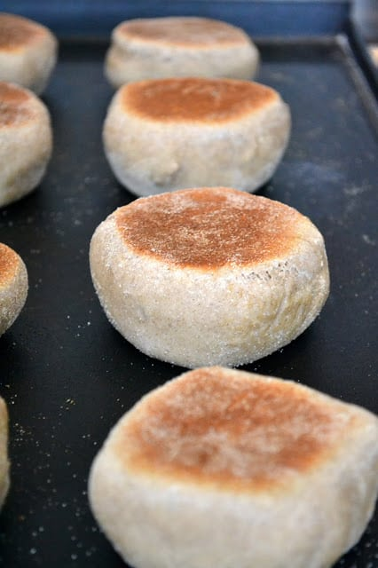 Cooking homemade English Muffins on a stove top griddle