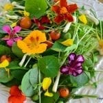 25+ Ways to Put Edible Flowers on the Table
