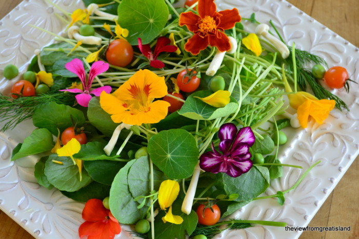 How to Eat Flowers, Edible Flowers