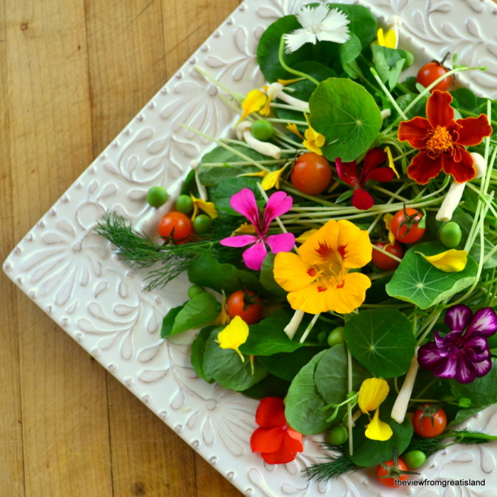 25 Ways to Put Edible Flowers on the Table/ The View from Great Island