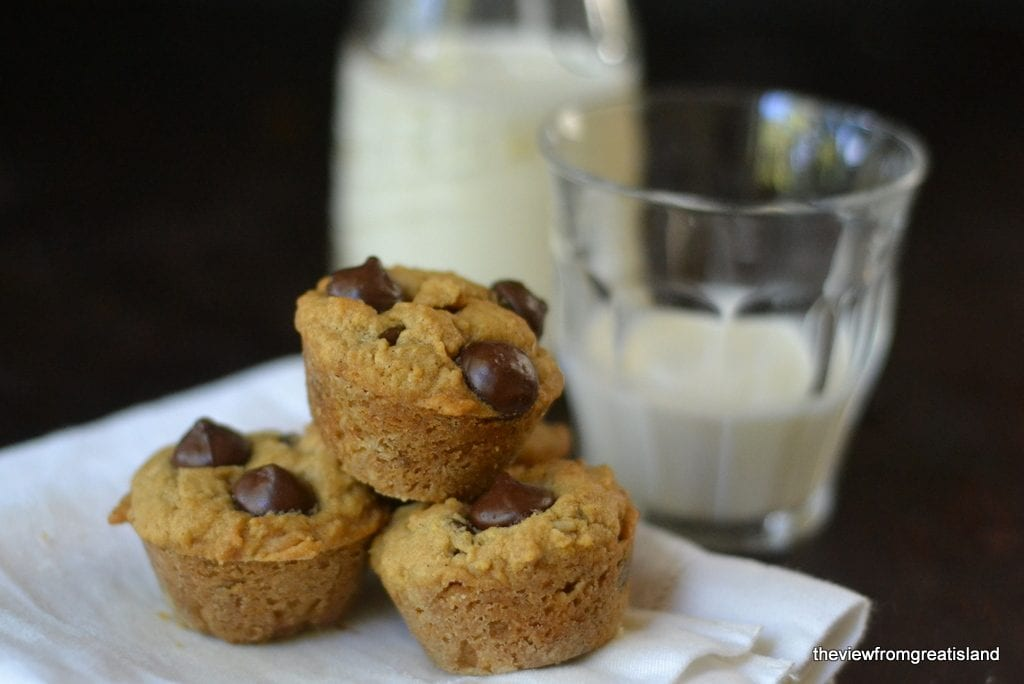 Chocolate Chip Peanut Butter Oatmeal Bites