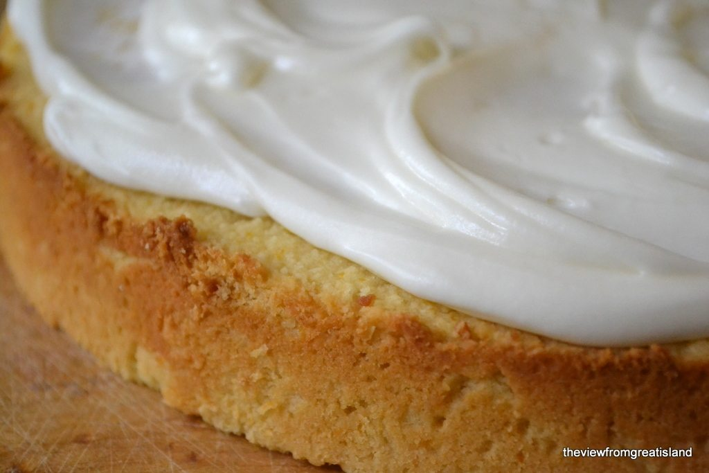 Close up photo of flourless whole meyer lemon cake.
