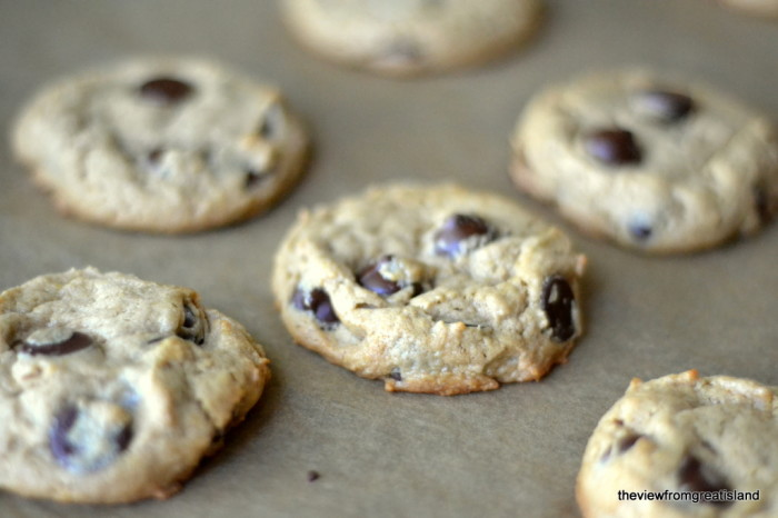 Flourless Peanut Butter Chocolate Chip Cookies, Gluten Free   The View from Great Island 4
