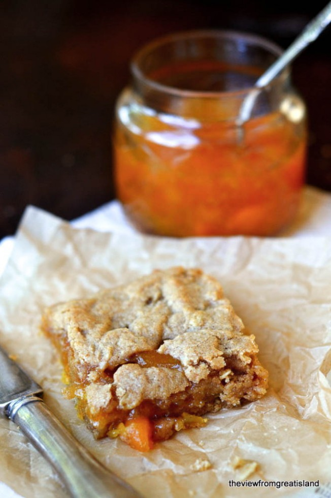 Marmalade and Oat Bars
