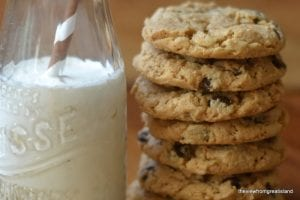 flourless cashew butter chcolate chip cookie 12