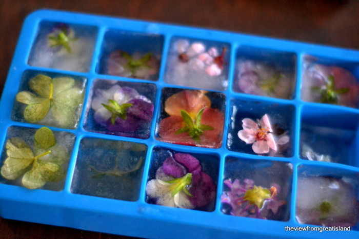 How to make flower ice cubes 1