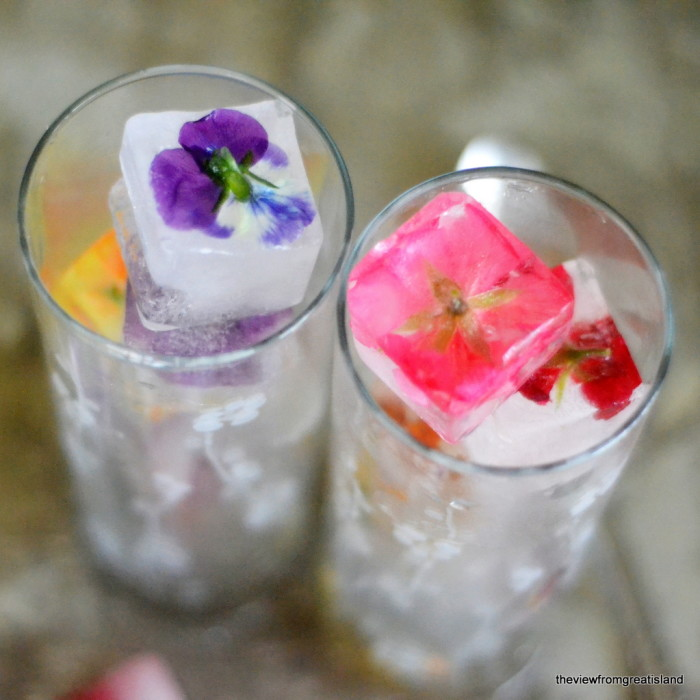 flower ice cubes square