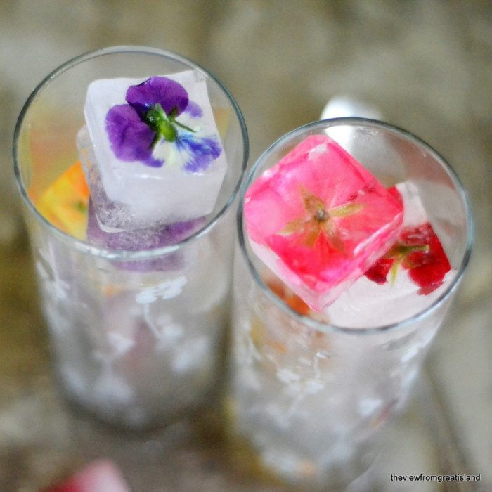 Photo of Edible Flower Ice Cubes in two glasses.