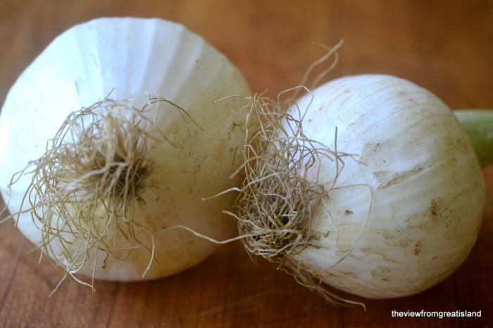 Walnut Crusted Maui Onion Rings