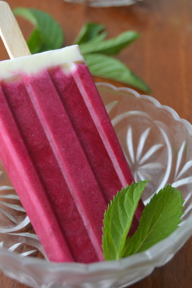 Chilled Beet Soup Popsicles 2