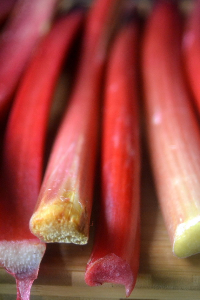 rhubarb | The View from Great Island