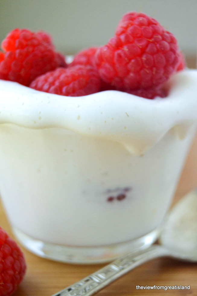 All Natural Fat Free Whipped 'Cream' with berries