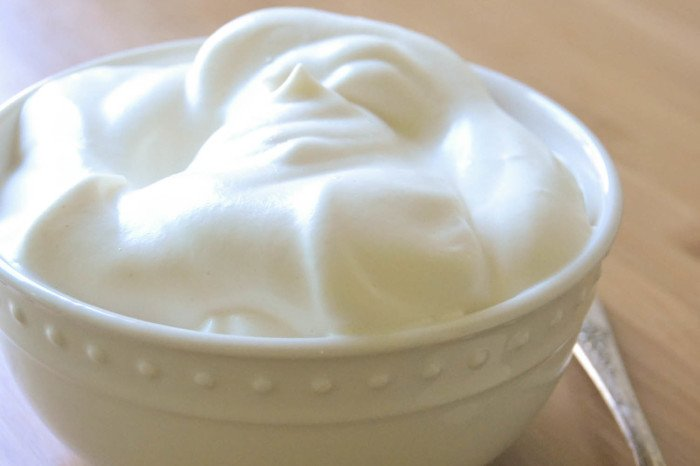 Fat Free Whipping Cream 48