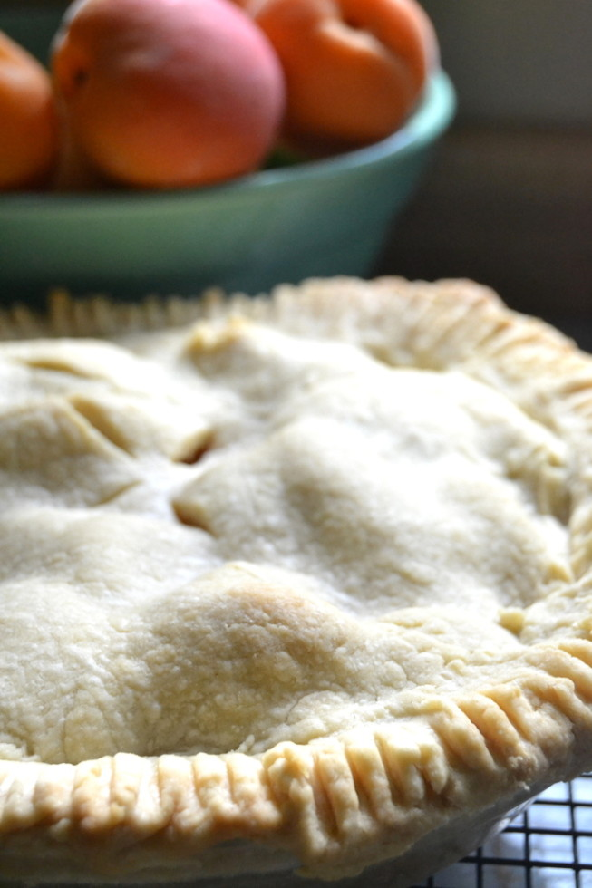 Apricto Pie, cooling