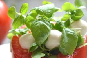 Micro Caprese Salad 7