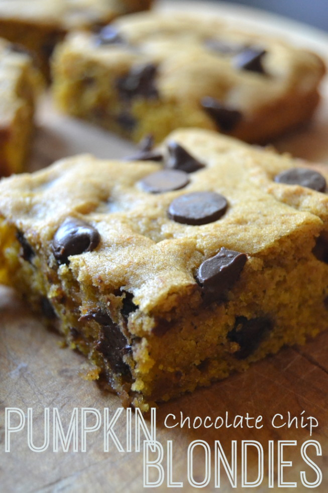 Pumpkin Chocolate Chip Blondies - The View from Great Island