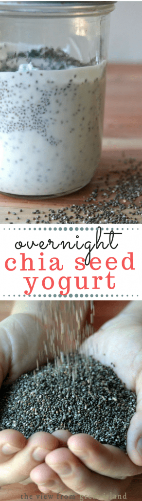Overnight Chia Yogurt ~ this easy healthy breakfast can be jazzed up with all sorts of fruits and nuts, or just enjoyed with a drizzle of honey. #breakfast #superfood #healthybreakfast #overnightbreakfast #yogurt #ancientgrains #glutenfree #paleo #whole30 #chia #chiayogurt