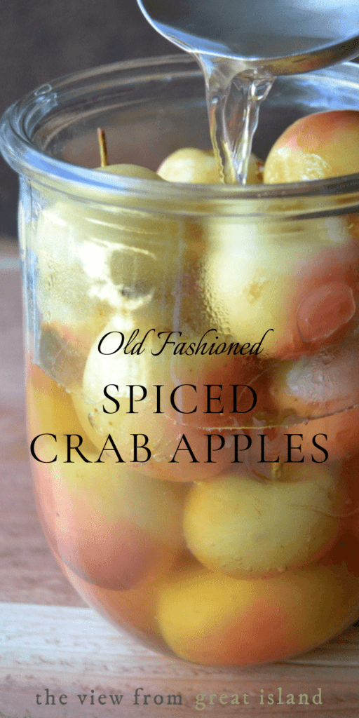 spiced crab apple pin