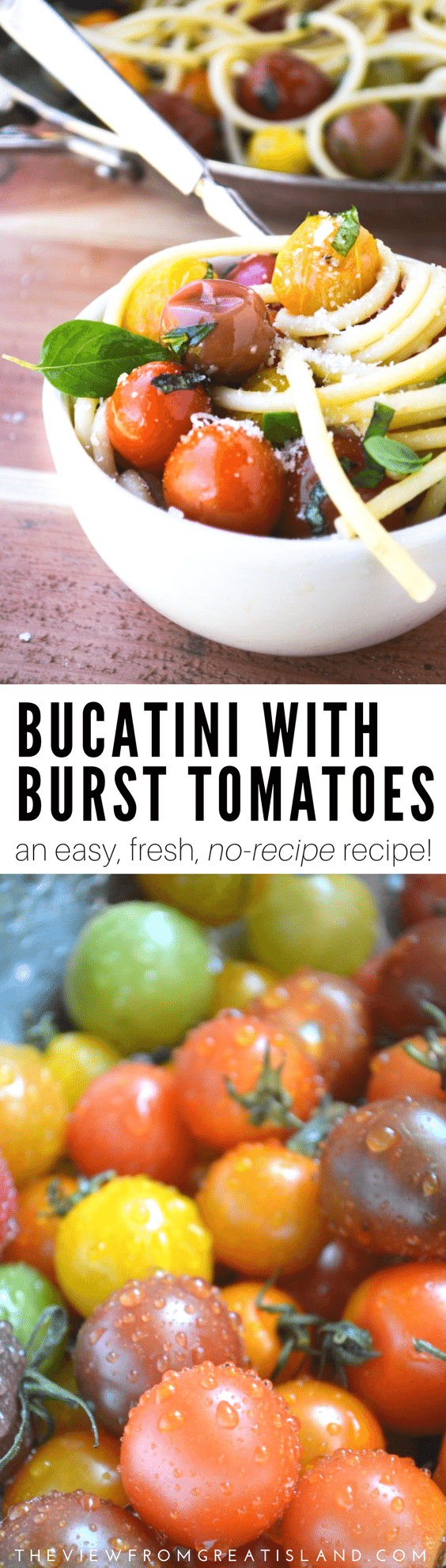 Bucatini with Burst Tomatoes is a gloriously healthy pasta recipe made with juicy, colorful cherry tomatoes and fresh basil ~ no matter what the calendar says, this recipe screams summer! #bucatini #pastarecipe #tomatoes #cherrytomatoes #summerpastarecipe #healthypastarecipe #vegetarianpasta #vegetarian #dinner #30minutemeal #vegan #vegetarian #heirloomtomatoes
