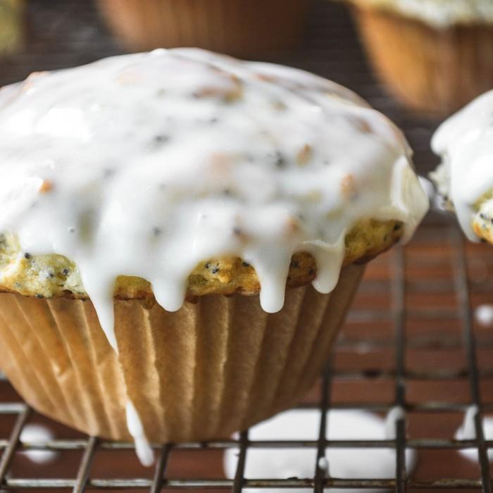 classic lemony poppy seed muffins