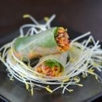 asian slaw summer rolls