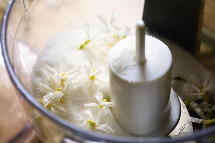 diy jasmine flower sugar cubes