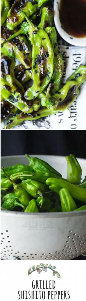 Shishito peppers are delicate Japanese peppers that become addictive when you roast them!