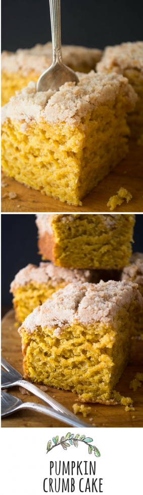 This cake is lightly spiced and not too sweet --- perfect for a fall morning!