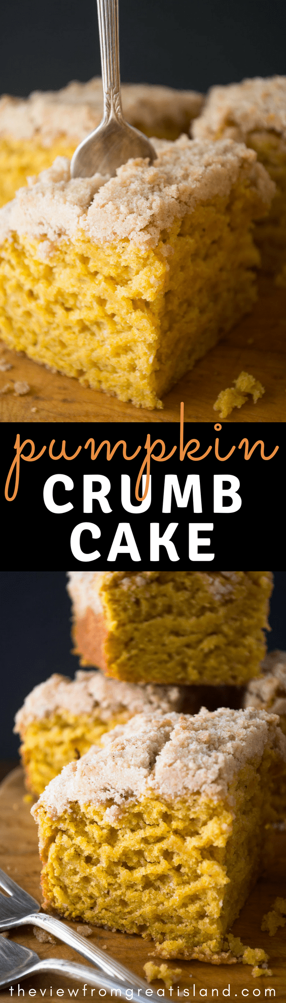 My favorite Pumpkin Crumb Cake is a classic fall coffee cake enriched with pumpkin and perfectly spiced. It has become a fall breakfast tradition in our house! #cake #pumpkindessert #pumpkin #falldessert #fallbreakfast #pumpkinpoundcake #quickbread #poundcake #pumpkinbread