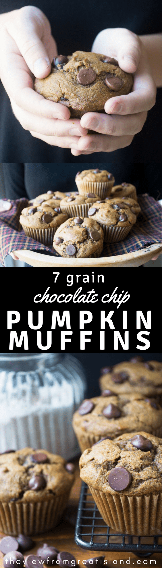 7-Grain Pumpkin Chocolate Chip Muffins ~ these amazingly healthy whole grain muffins are light and fluffy but pack a powerful nutritional punch with seven different types of whole grains! #healthy #healthymuffins #pumpkin #bestpumpkinmuffin #pumpkinchocolatechip #fall #breakfast #backtoschoolbreakfast #harvest #wholegrainmuffin #wholegrain