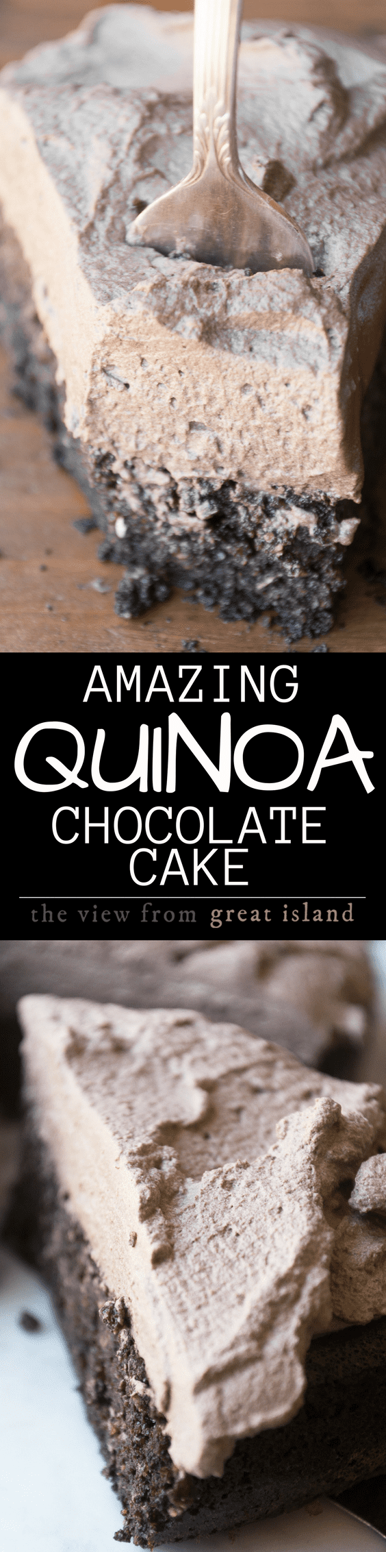 Quinoa Chocolate Cake ~ naturally gluten free and one of the moistest, fluffiest, most delicious desserts I've ever had ~ and it's all due to an unlikely ingredient.  This super food cake also happens to be super easy, just whip it up in the blender and enjoy! #glutenfree #bestglutenfreecake #glutenfreecake #chocolatecake #bestchocolatecake #snackcake #dessert #easycake #chocolatecakerecipe #recipe #healthycake
