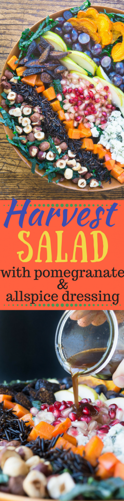 Harvest Salad with Pomegranate Allspice Dressing because salad love doesn't stop when the calendar switches over to fall...| theviewfromgreatisland.com