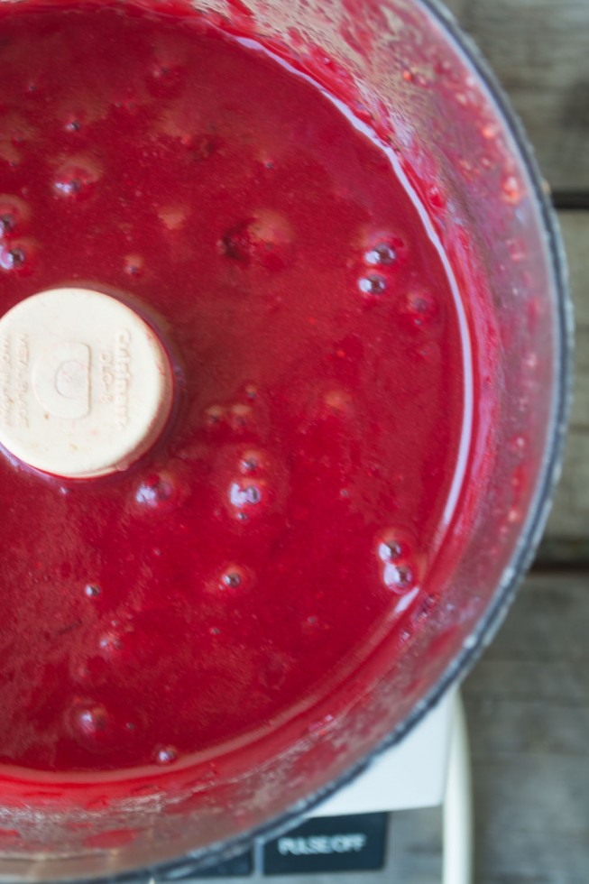 Fresh cranberry puree for cranberry curd