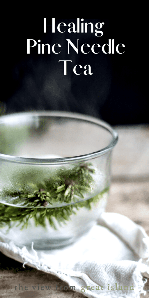 healing conifer tea pin