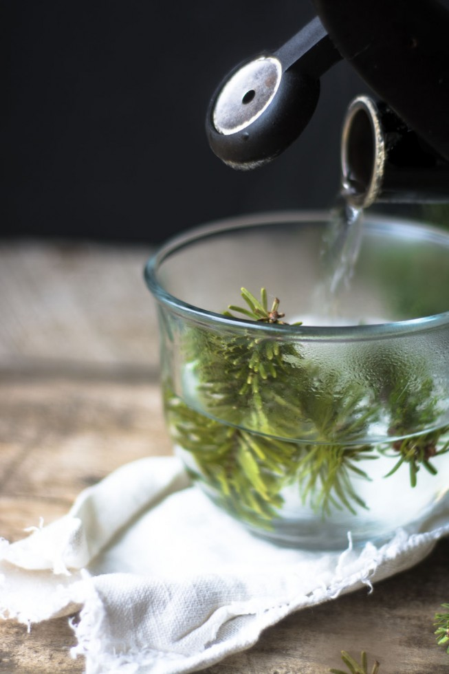 A healthy, healing conifer tea, made with spruce, fir, or pine needles