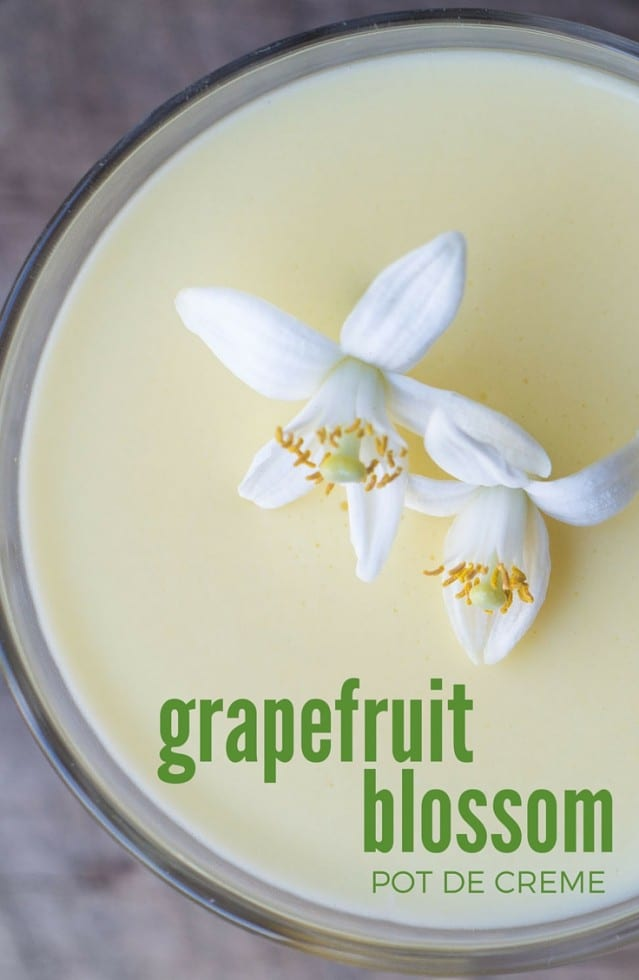 Grapefruit Blossom Pot de Creme is an elegant dessert infused with the essence of spring!