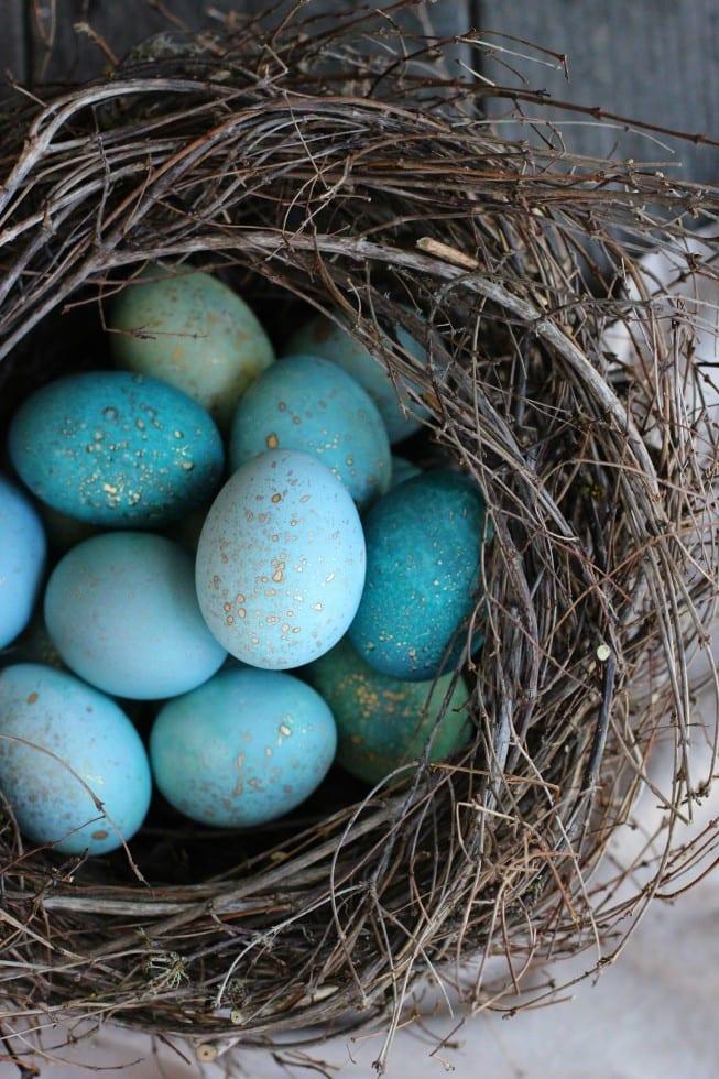 DIY Dyed Robin Eggs | Honestly Yum
