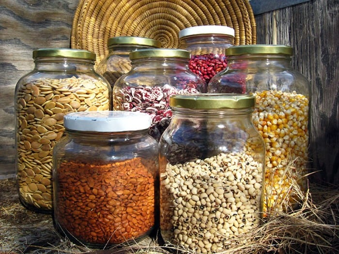 Americsn Artisans: Native Seeds