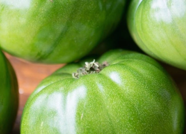 Fried Green Tomatoes | theviewfromgreatisland.com