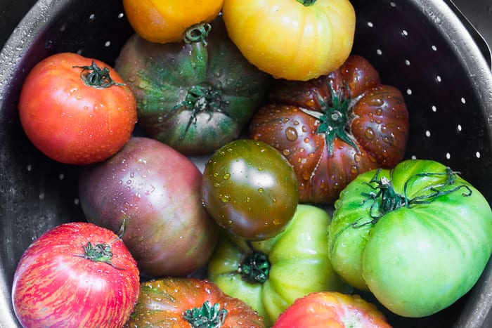 Heirloom Tomatoes for Basil Salad with Heirloom Tomatoes | theviewfromgreatisland.com