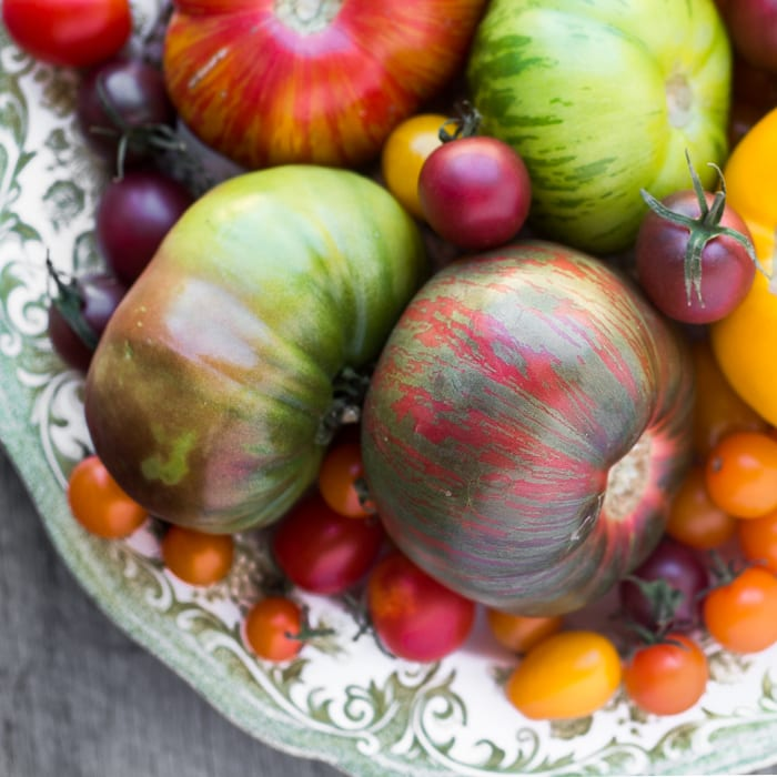 Heirloom tomatoes for Heirloom Tomatoes Parmesan | theivewfromgreatisland.com