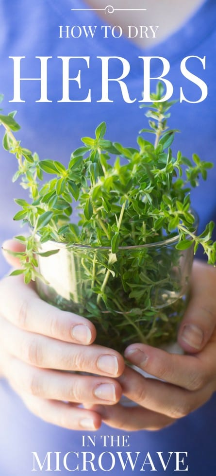 I'll show you exactly how to dry herbs in the microwave, it's quick, easy and a lot of fun! --- The microwave preserves color and flavor like no other method, and in minutes you can have months' worth of herbs ready to go. #freshherbs #growingherbs #driedherbs #parsley #sage #basil #mint #tarragon #thyme #cilantro